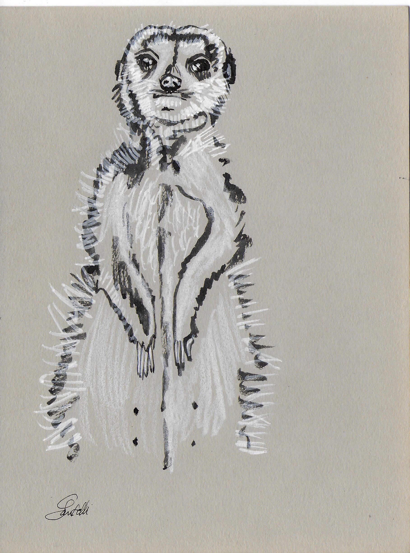 Claudine Santelli-suricate