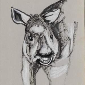 Claudine Santelli – Tapir