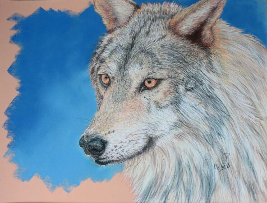 Karine D.-Loup gris2