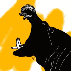 Maëlle H.R. – Hippopotame