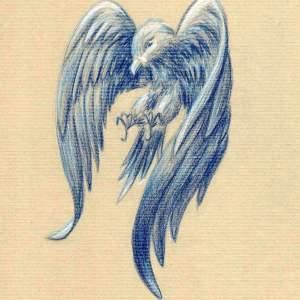 Monts d'imaginaire – Aigle bleu