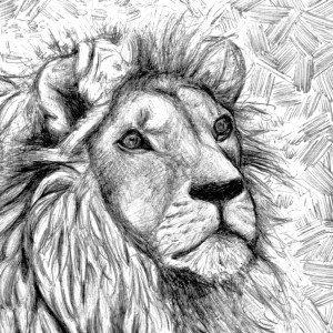 Céline Barrier – Lion – Print A5
