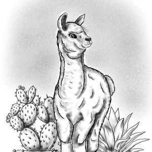 Gallïane – Alpaca – Print A5