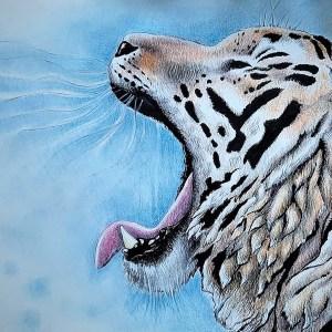 Lia R. – Tigre – Print A5