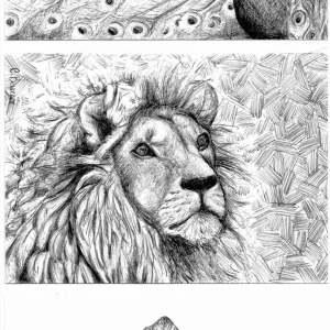 Wildlife-Conservation-Serie