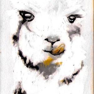 Claudine Santelli – Alpaga