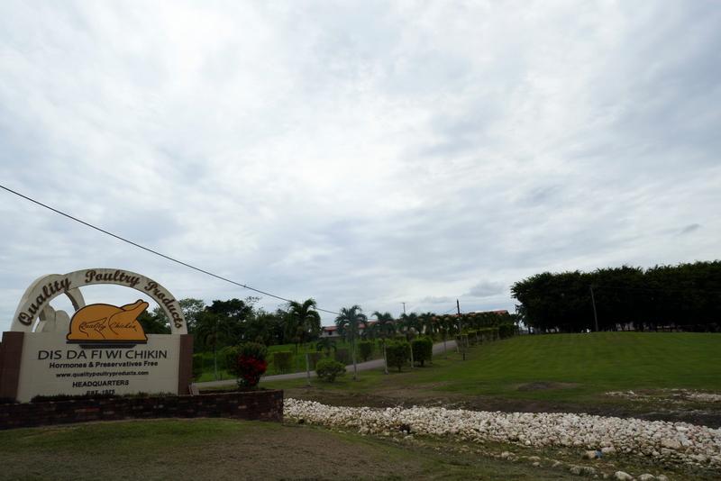 headquarters of Dis Da Fi Wi Chikin in Spanish Lookout
