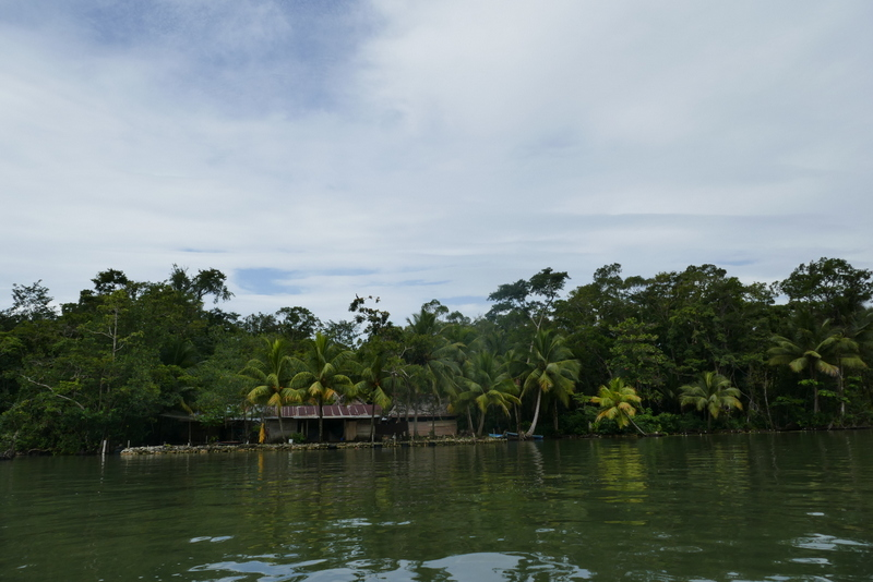 Houses on the Rio Dulce