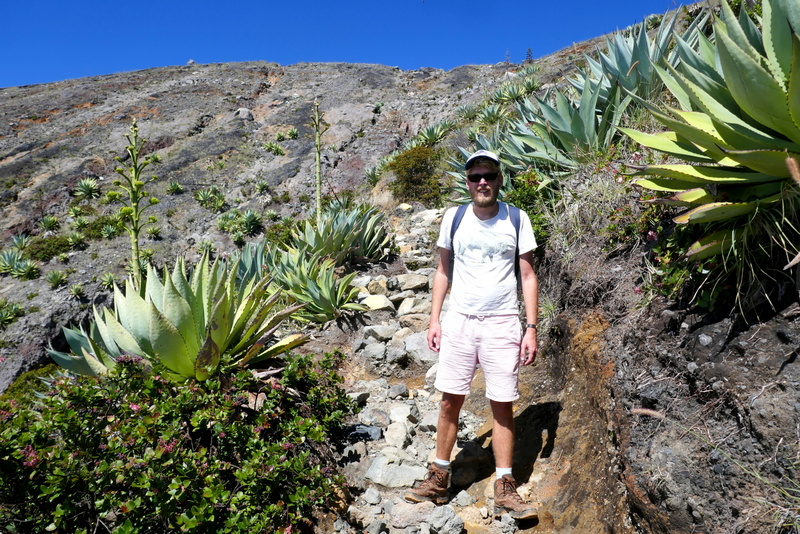 Tom is surrounded by cactuses on volcano Santa Ana.