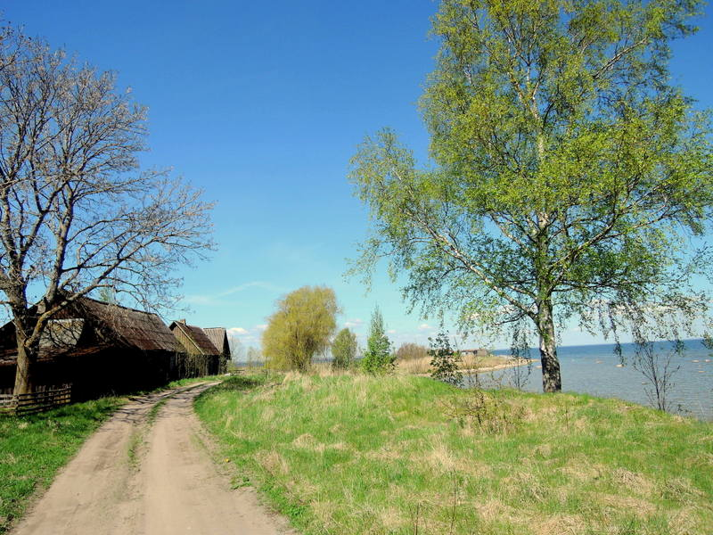coastal hiking in Estonia; trail near Tahkuranna