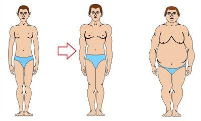 Разбираемся в типах телосложения