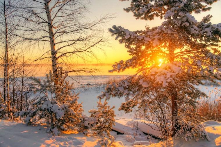 Вслед за снегопадами в Ленобласть нагрянули морозы