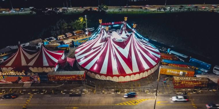 Регион запретил цирки шапито