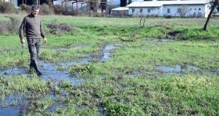 Spuž: Fekalije uništile imanja, mještani se guše od smrada