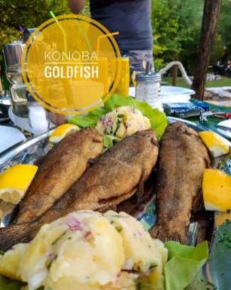 goldfishmontenegro_20200529_5