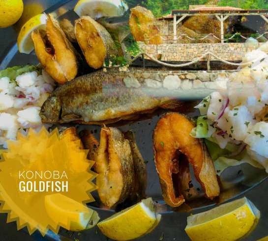 goldfishmontenegro_20200605_2