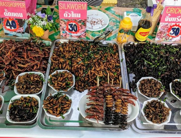 Heuschrecken Mehlwürmer Stand Koh Samui