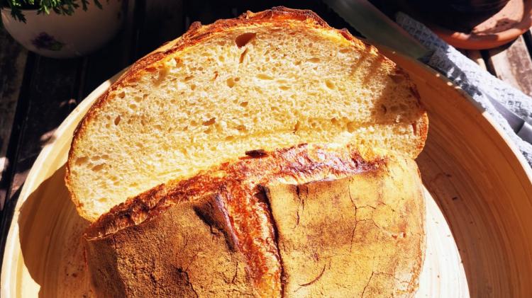Pane di grano duro - italienisches Topfbrot mit Hartweizen-anschnitt