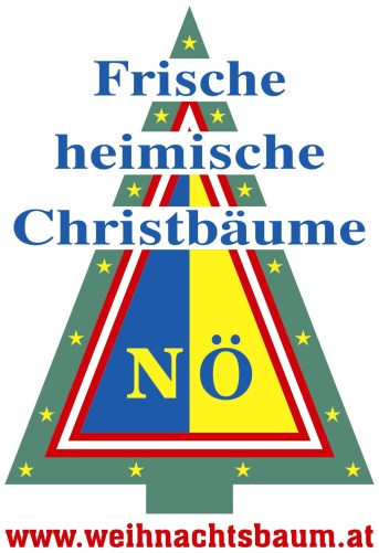 ARGE_Christbaum_Internet