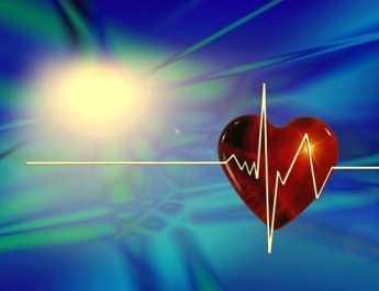 Herz Puls Blutdruck