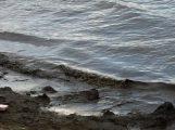 Bodenseewasser