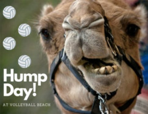 Get Over the Hump at Volleyball Beach! | Volleyball Beach