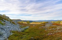 Søppå fjellet ( Østfjellet )