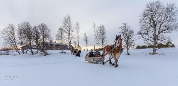 Så er følget i gang , en lang rekke med hest og slede ( 21 i tallet ) beveger seg utpå Flötningssjøen på tur til Drevsjø