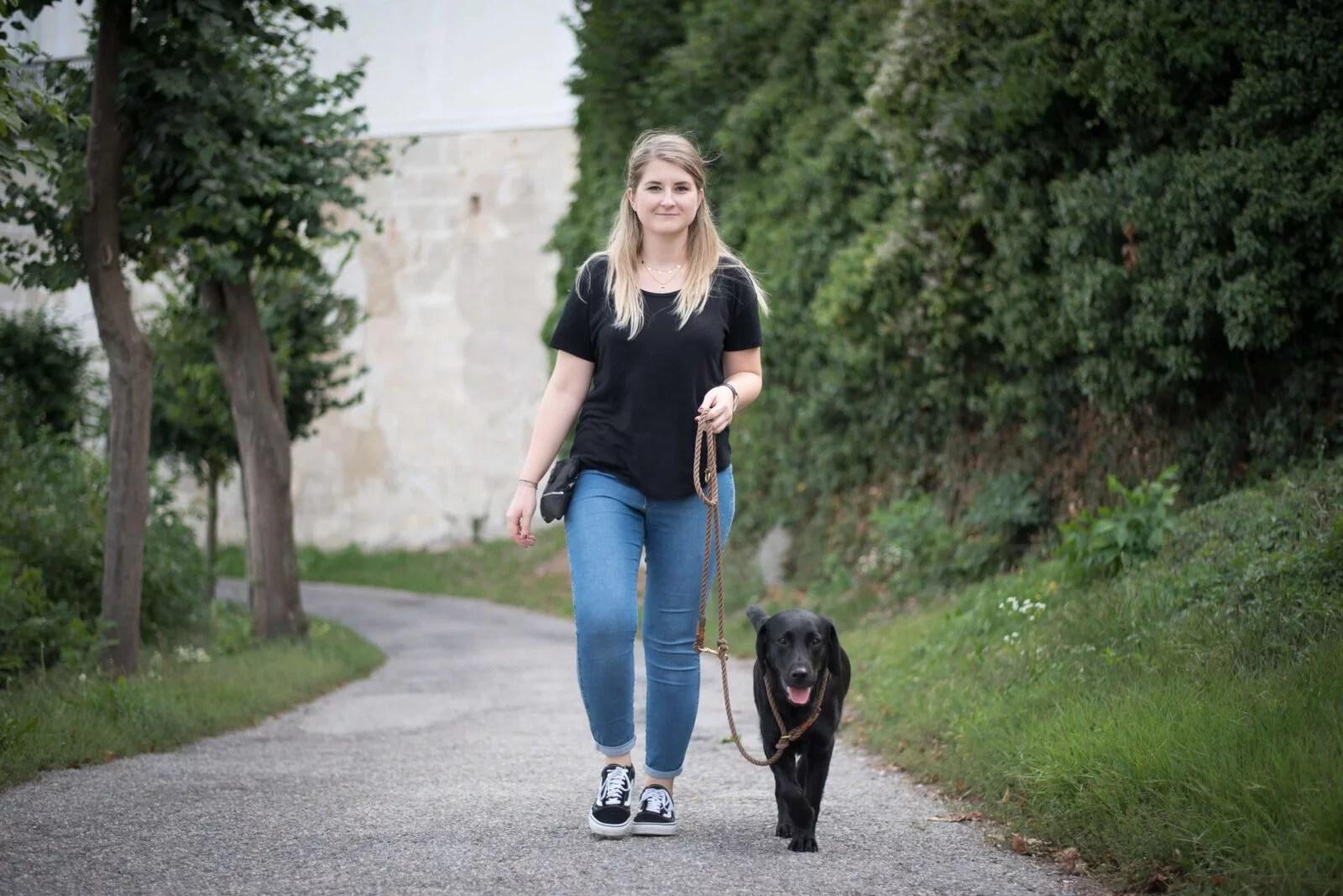 vollzeit4beiner-hundetraining-socialwalk-social-walk-hundeschule-linz-land-oberoesterreich-steyr-wels-hund