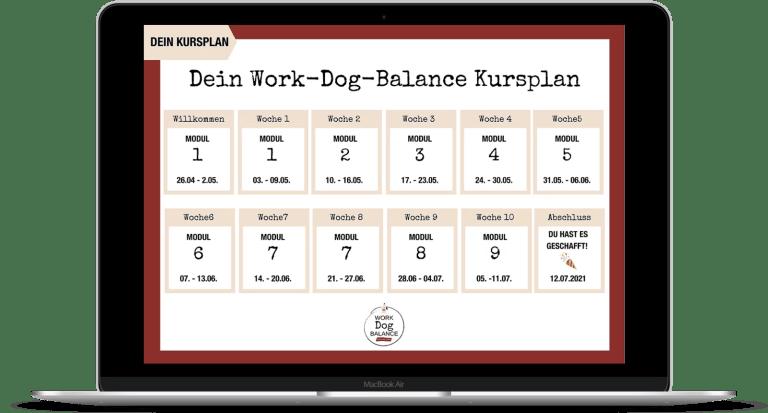 work-dog-balance-hunde-online-kurs-warteliste-hundetrainer