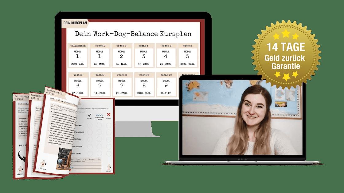 mockup-work-dog-balance-onlinekurs Kopie