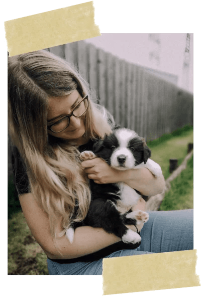 hundetraining-hundeschule-welpe-vollzeit4beiner-kerstin-quast