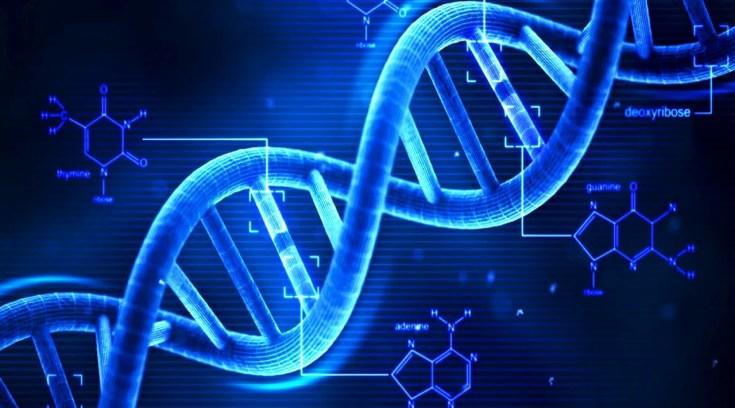 Mαριάννα Διομήδους: Το Ανθρώπινο DNA! Όλα όσα δε ξέρεις!
