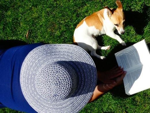 Θες να εργαστείς ως κηπουρός, βοηθός σπιτιού ή φροντιστής ζώων; ΔΕΣ!