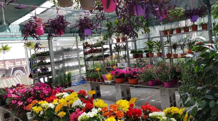Garden Shop: Φτιάξε το κήπο σου, βάλε χρώμα στη ζωή σου ξοδεύοντας ελάχιστα!