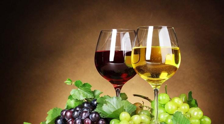 Οι Τάιμς της Νέας Υόρκης αποθεώνουν δικό μας κρασί!