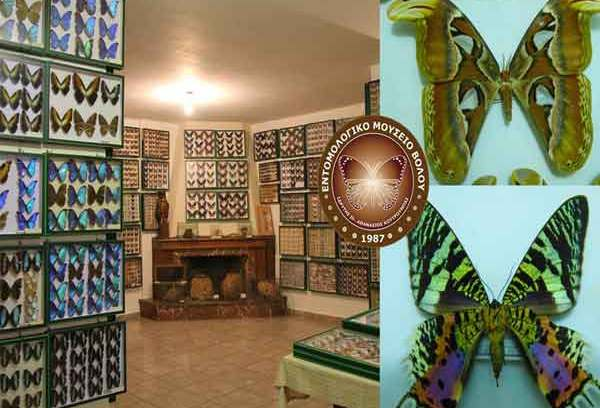 Εσείς ξέρατε ότι ο Βόλος έχει εντομολογικό μουσείο,το μοναδικό στο είδος του;