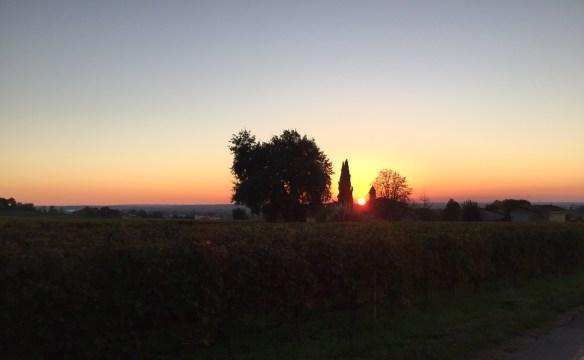 Sunset over Chateau Angelus
