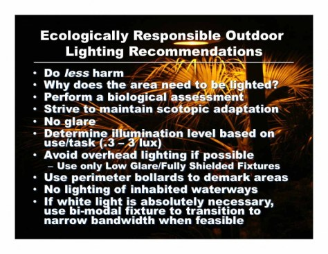 Ecological Lighting 3