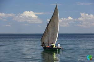 Navegació en Dohw per les QUIRIMBAS 48-imp