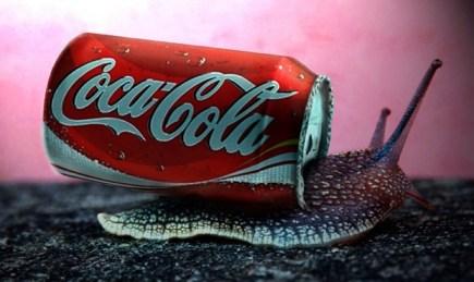 Cargol Coca Cola