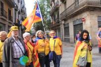 Diada Nacional de Catalunya 2013 - 12-imp