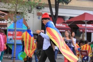 Diada Nacional de Catalunya 2013 - 27-imp