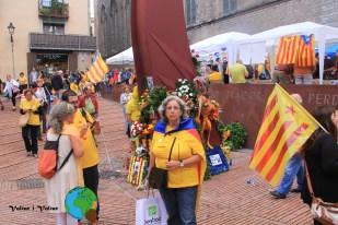 Diada Nacional de Catalunya 2013 - 29-imp