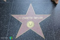 Los Angeles - Hollywood Boulevard - 7-imp