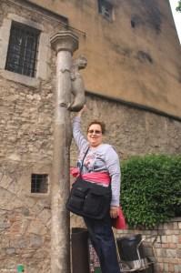 Girona - Temps de Flors 2014 a3-imp