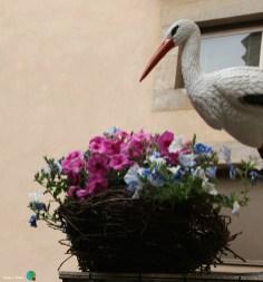 Girona - Temps de Flors 2014 z1-imp