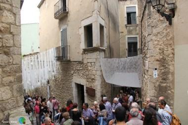 Girona - Temps de Flors 2014 za1-imp