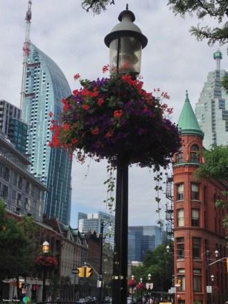 Toronto - barri vell1-imp