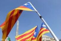 Diada Nacional de Catalunya - Voltar i Voltar - 52-imp